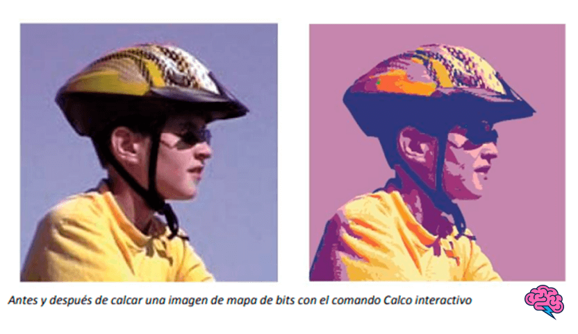 Antes y después de una imagen de mapa de bits Manual Adobe Illustrator 2021 PDF